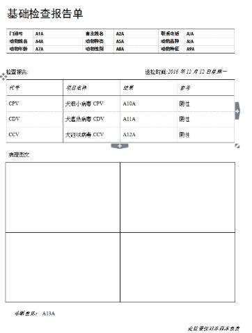 易语言演示生成word单据并打印源码